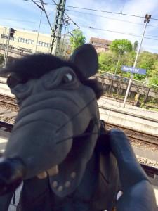 ratten-selfie